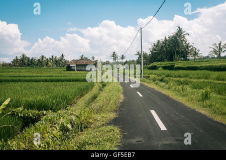 Country Side - Stock Image