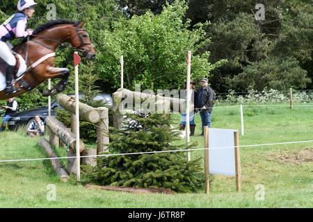 Rockingham Castle, Corby, UK. 21st May, 2017. Nana Dalton and her horse Coolrock Wacko Jacko vault a double log - Stock Image