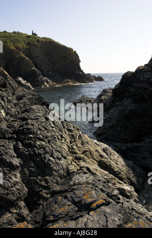 Cadgwith Cove Cornwall - Stock Image