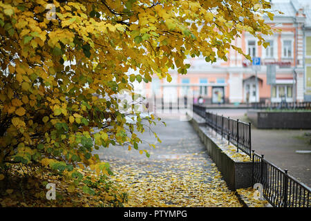 Autumn landscape. The leaves fly from the trees in the city. Autumn in the city on small street along forged fences - Stock Image