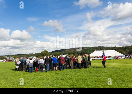 Visitors to the Lancashire Game and Country Festival 2015 gather in the centre of the show ring to watch a  sheep - Stock Image