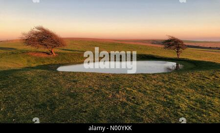 Pond and two trees in glorious autumn weather on South Downs Way west of Ditchling Beacon in West Sussex. Credit: Johan Siebke/StockimoNews/Alamy Live News - Stock Image