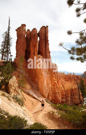 One Person hiking in Bryce Canyon, Utah, USA. - Stock Image