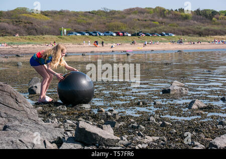 Longniddry Bents, East Lothian, Scotland, United Kingdom, 22nd April 20-19. UK Weather: a very warm sunny day with clear blue sky brings people out to enjoy the beach with a girl retireving a lost ball in the sea - Stock Image