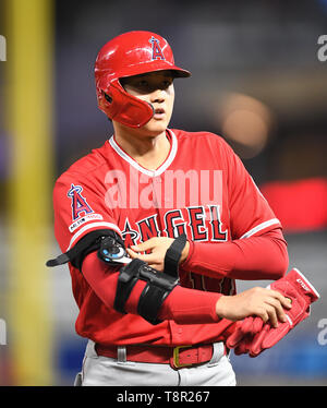 Los Angeles Angels' designated hitter Shohei Ohtani takes off his elbow brace during the Major League Baseball game against the Minnesota Twins at Oriole Park at Target Field in Minneapolis, Minnesota, United States, May 13, 2019. Credit: AFLO/Alamy Live News - Stock Image