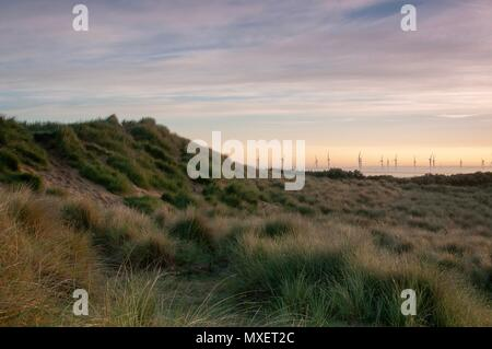 Wind turbines rising out of the mist in the distance on a summer's morning - Stock Image