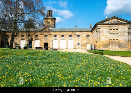 Stable block and clock tower at Belsay Hall, an early 19th Century mansion house, in Northumberland, England, UK - Stock Image