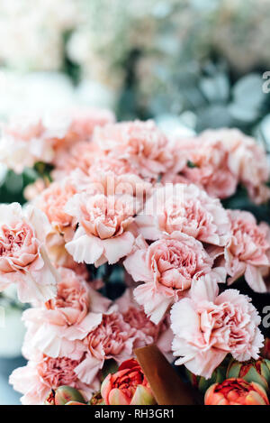 Frilly Pink Carnations - Stock Image