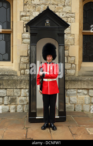 Guard at Tower of London, England - Stock Image