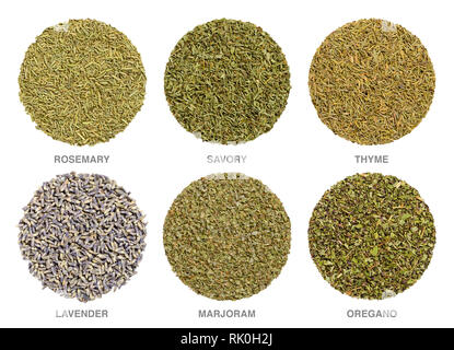 Culinary herbs for Herbes de Provence. Herbal circles. Dried rosemary, savory and thyme are always used, lavender, marjoram and oregano is often added - Stock Image