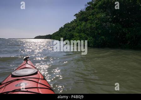 Kayak glides through Florida Bay, Everglades National Park, Miami, Florida, USA - Stock Image