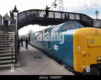 Preserved Deltic diesel D9019 'Royal Highland Fusilier' (New number 55019), enters Sheffield Park station - Stock Image