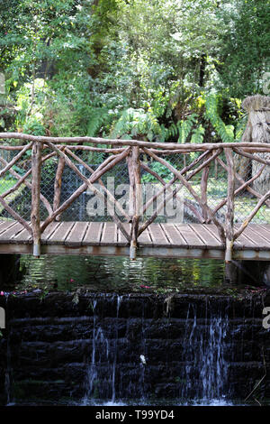 Small wooden bridge located in a forest in the island of Madeira. Below the bridge there is a mini waterfall and some green plants. - Stock Image