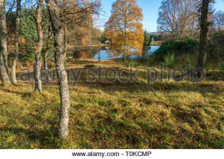 Abandoned boat house and lake in the countrside in Perthshire, Scotland during autumn - Stock Image