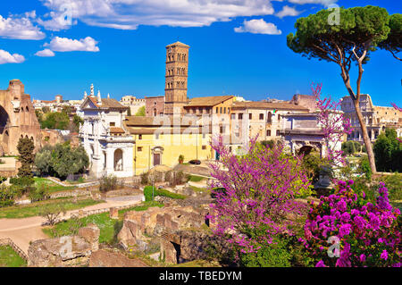 Scenic springtime panoramic view over the ruins of the Roman Forum in Rome, capital of Italy - Stock Image