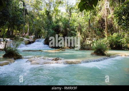 Pool at Tat Kuang Si waterfalls in woodland. Luang Prabang, Louangphabang province, Laos, southeast Asia - Stock Image