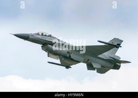 Belgian Air Force F16 Fighting Falcon - Stock Image
