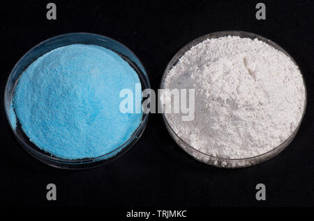 Components of traditional fungicide, Bordeaux mixture, copper sulphate and slaked lime (Calcium hydroxide), widely used in agriculture and gardening - Stock Image