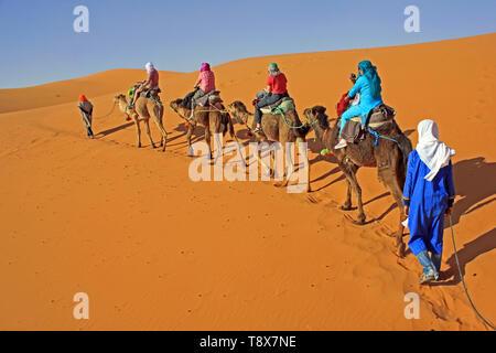 Tourists Enjoying Camel Trek In Erg Chebbi Dunes, Merzouga, Morocco - Stock Image