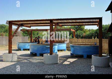 italy, basilicata, policoro, riserva regionale bosco pantano, wwf natural reserve, Centro Recupero Tartarughe Marine (marine turtles recovery centre), - Stock Image