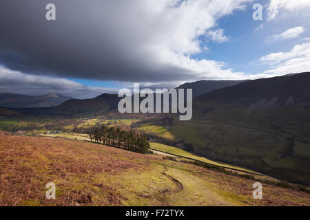 Looking down towards Newlands Beck from High Snab Bank in the English Lake District, UK. - Stock Image