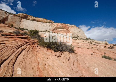 Sedimentary sandstone striations and arch at Zion National Park Utah USA - Stock Image