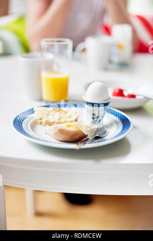 Boiled egg and toast - Stock Image