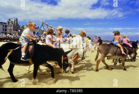 Donkey rides on Weymouth beach, Dorset, England, UK - Stock Image