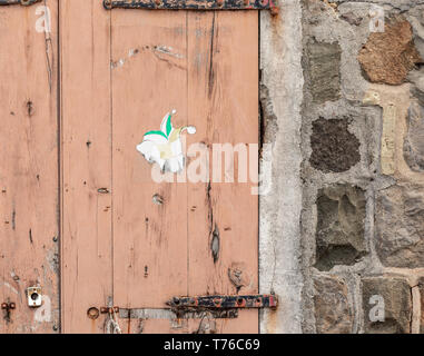 detailed image of an old weathered door in Gustavia, St Barts - Stock Image