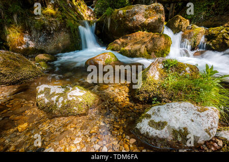 Cascade falls over mossy rocks - myrafalls in lower austria during spring - Stock Image