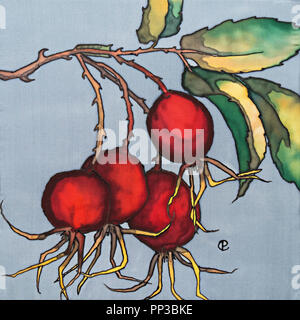 Photograph of silk painting of Red Rose Hips using steam fixed dyes and black outliner by Paula Chapman - Stock Image