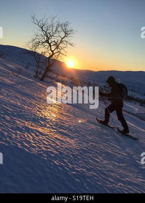 Snowshoe trip during sunset in Hardangervidda national park, Norway - Stock Image