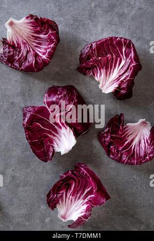 Radicchio leafs over grey concrete background - Stock Image