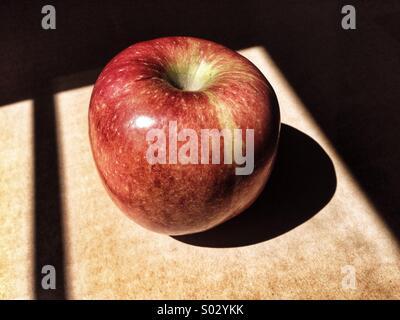 Apple in sunlight - Stock Image
