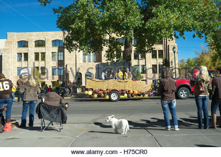 Wyoming University Homecoming Parade making its way along Grand Avenue in Laramie, in Wyoming, USA. - Stock Image