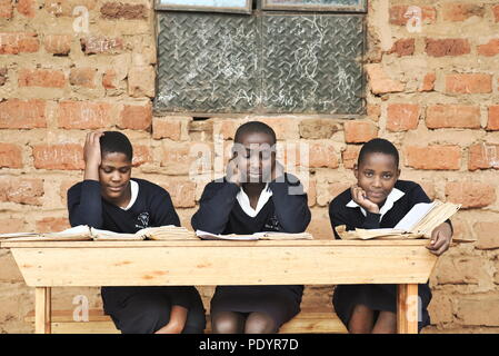 young Ugandan school children dressed in a school uniform sit outside on wooden benches studying for their exams with brick classroom in background - Stock Image