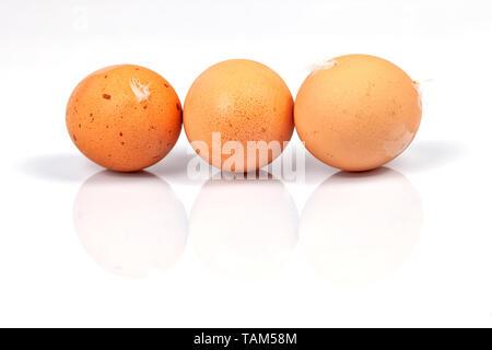 Three homemade organic eggs isolated on white. - Stock Image