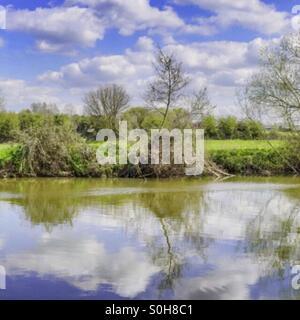 River - Stock Image