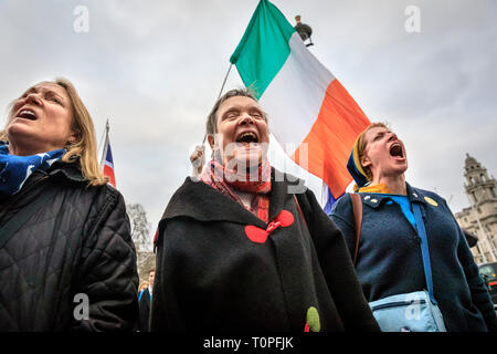 Westminster, London, UK, 21th Mar 2019. Anti-Brexit protesters, including those with Irish flags, congregate around SODEM (Stand of Defiance European Movement) founder Steve Bray get together outside the Houses of Parliament for their daily 'Stop Brexit' shout at the gates. The shout out every evening has become a routine over the last almost 2 years, as they defiantly make their voices heard. Credit: Imageplotter/Alamy Live News - Stock Image