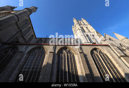Tall windows and belfry above the Church of Our Lady, Bruges. - Stock Image