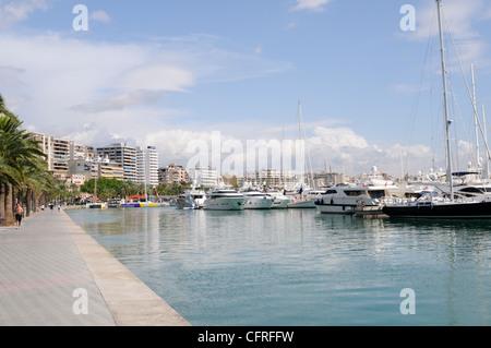 Bucht von Palma mit Yachten auf Mallorca, Spanien, Europa.   Bay of Palma with yachts on Majorca, Spain, Europe. - Stock Image