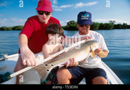 Florida Gulf Coast Tampa Bay family measures redfish trout light tackle fishing expedition - Stock Image