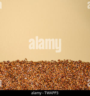 Healthy Brown Linseeds Superfood Seeds or Grain With Copy Space - Stock Image