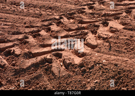 deep wheel tracks in dried soil from a field after harvest, tractor wheel tracks in red sand - Stock Image