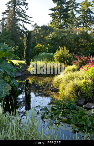 Queen Elizabeth Park in Vancouver, BC Canada.  Beautiful plants and pond in the gardens in late summer. - Stock Image