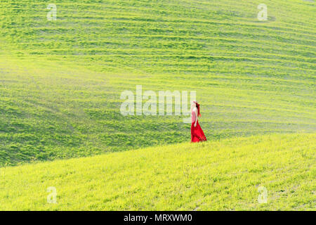 San Quirico d'Orcia, Orcia valley, Siena, Tuscany, Italy. A young woman in red dress  is walking in a wheat field - Stock Image