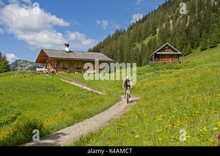 Downhill Of A Cyclist From The Enningalm In The Ammergau Alps - Stock Image
