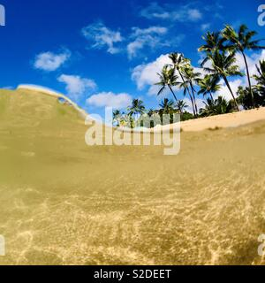 Over under in the ocean of palm trees on the beach. Hanalei, Kauai, Hawaii. - Stock Image