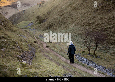 UK, England, Derbyshire, Litton, Tansley Dale, woman walking through valley in winter - Stock Image