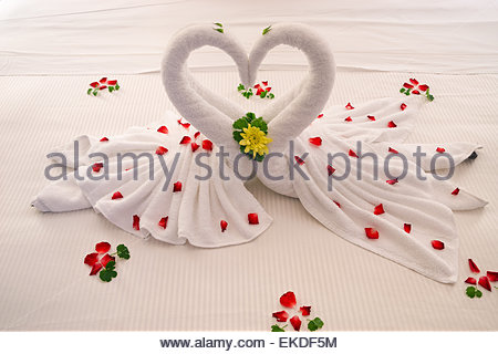 Bed decoration : two swans made of towels forming the shape of a heart - Stock Image
